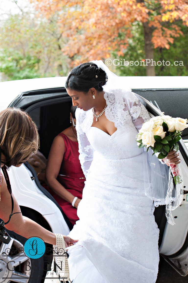 Wedding Photographer Toronto Ontario