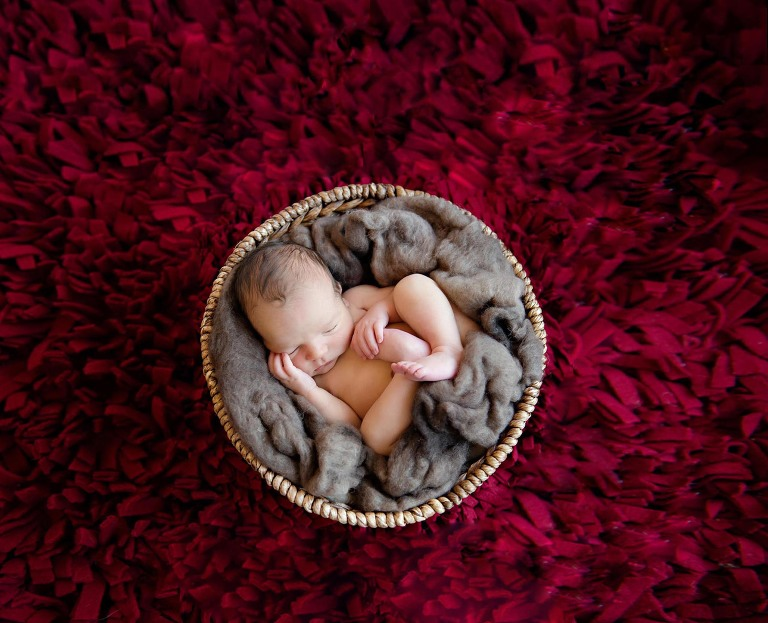 newborn photographer burlington ontario