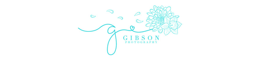 Gibson Photography – Burlington Wedding Photography logo